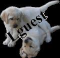 http://lguest.ozlabs.org/lguest-logo.png