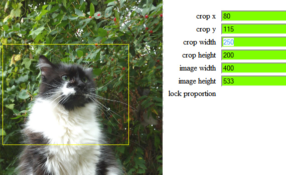 jQuery Resize And Crop